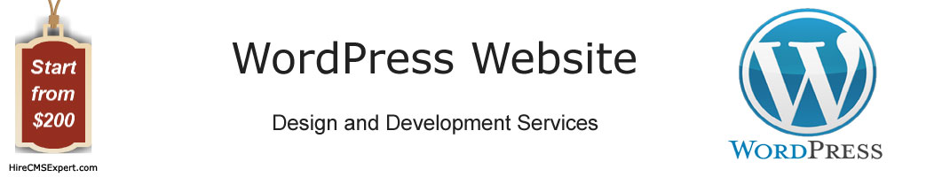wordpress website development services kolkata india, hire wordpress developer